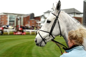 Grey Horses & The Grand National